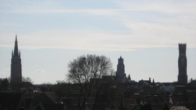 the view of Bruges from the first windmill