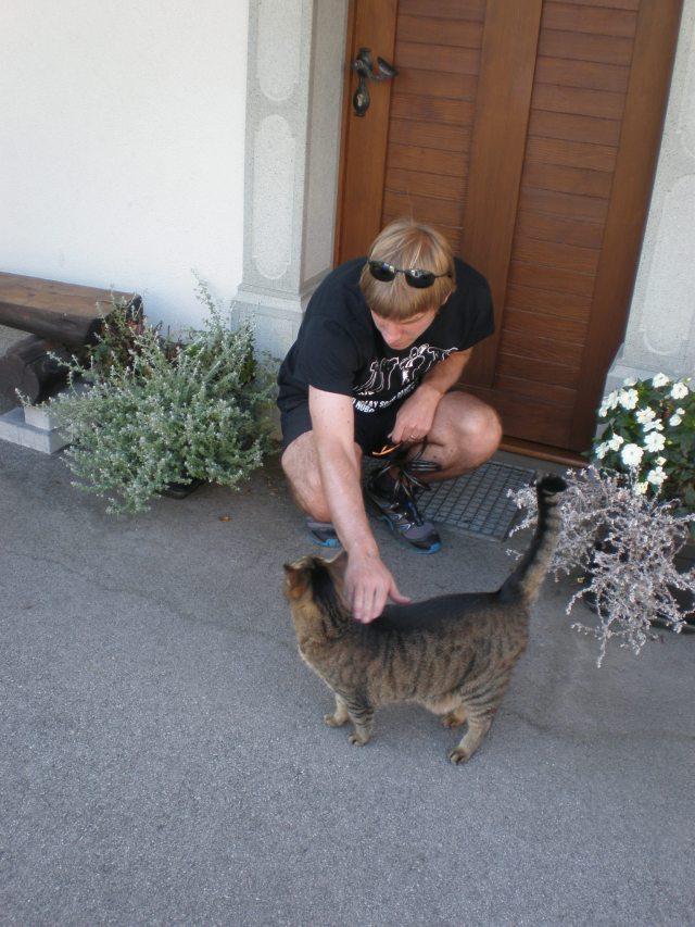 Slovenian cat 1, Bled, 2015