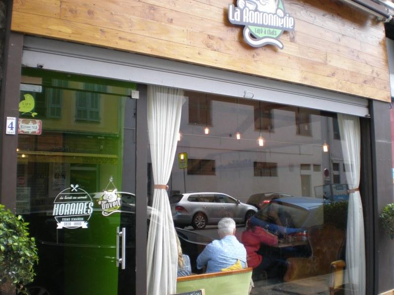 cat cafe in Nice, France