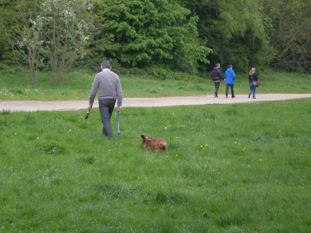 Rowan Atkinson in Hampstead Heath park