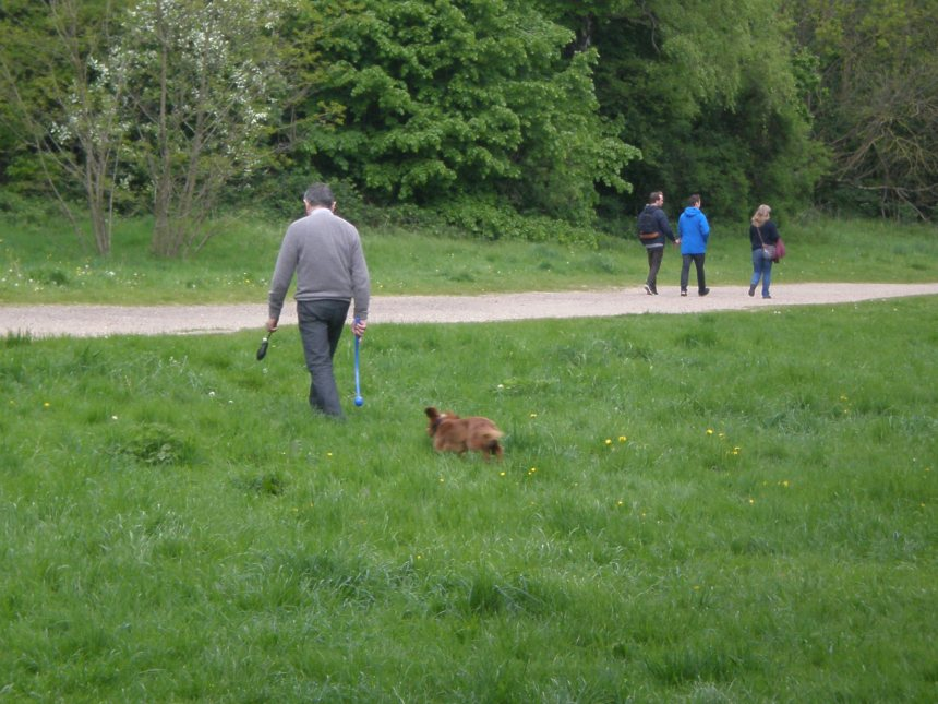 Rowan Atkinson in Hampstead Heath park