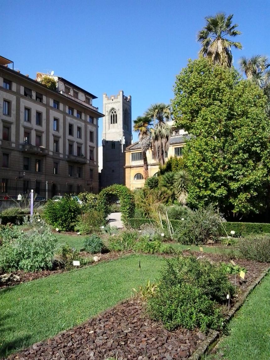 Botanical Garden, Florence