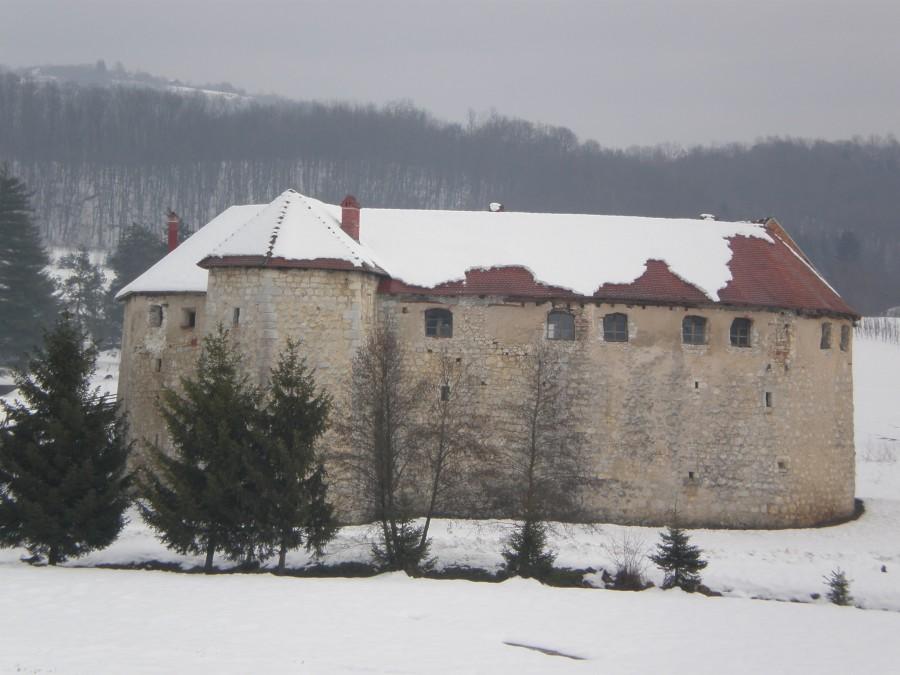 Ribnik castle