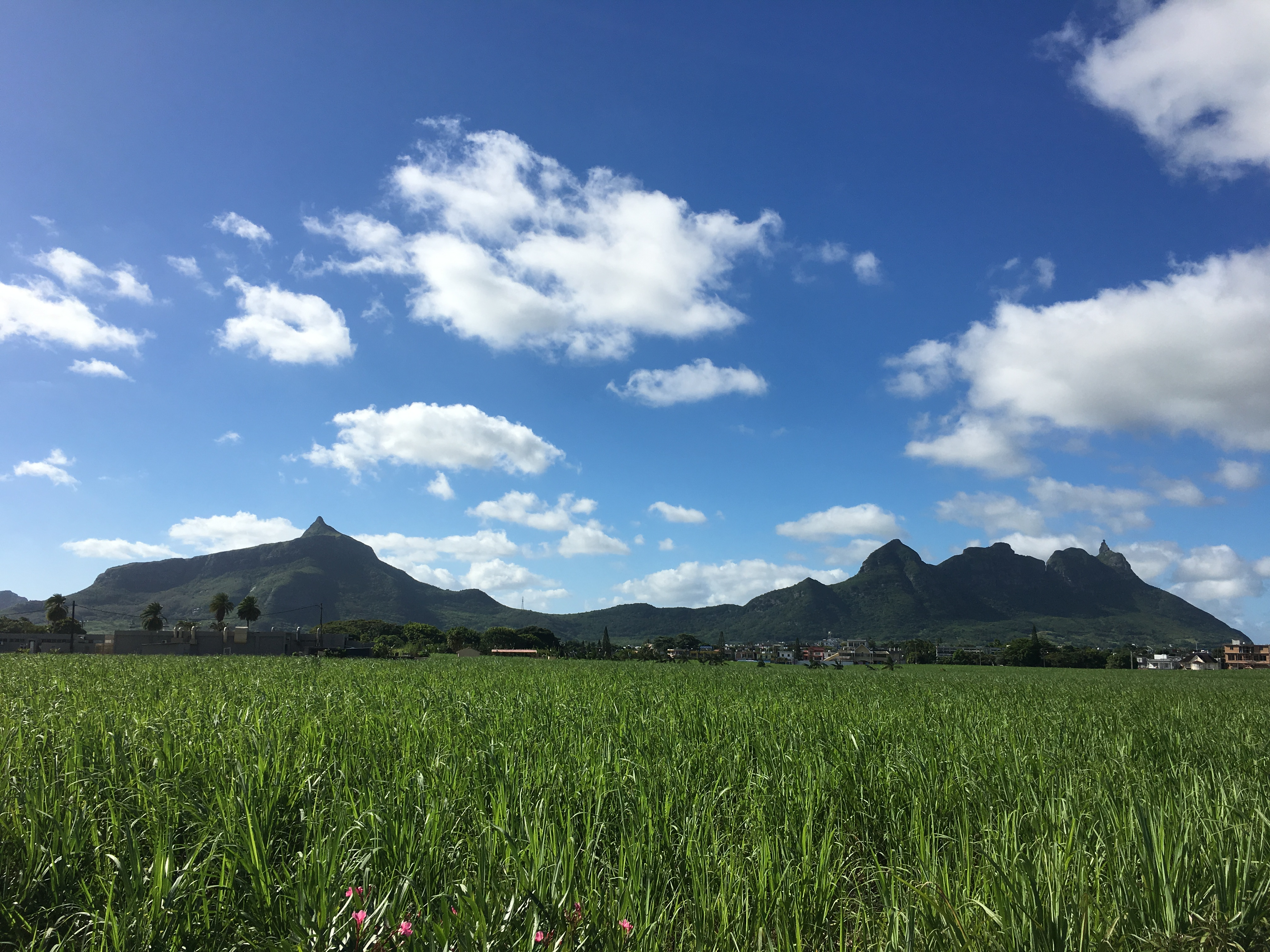 Guest Post: An invitation to explore Mauritius | the Red Phone Box
