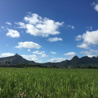 Guest Post: An invitation to explore Mauritius