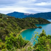 Guest Post: 5 Reasons Why Everyone Should Visit New Zealand