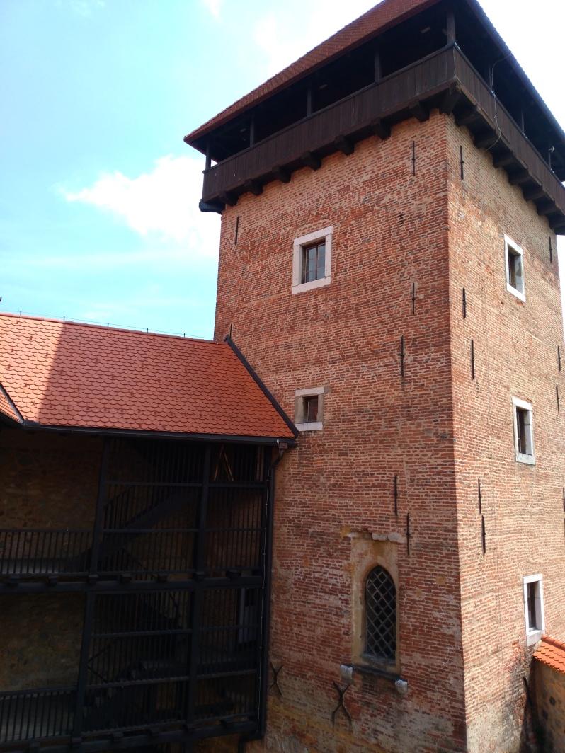 Branič kula, Dubovac Castle